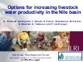 Options for increasing livestock water productivity in the Nile basin