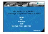 Nile Basin Focal Project