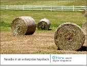 Needle in an enterprise haystack