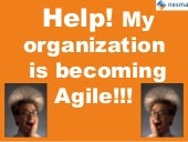 Nesma autumn conference 2015 - Help! my organization is becoming agile!!! - Brian Teunissen