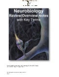 IVMS Neurobiology Review | Overview Notes