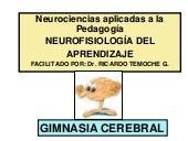 Neurociencias ginnasia cerebral-apr...