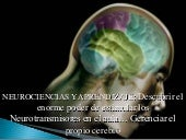Neurociencias en el aula