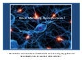 Neuromarketing : Neurononsense ?
