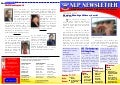 NLP Newsletter (3rd quarter 2013)