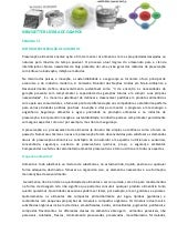 Newsletter licinia de campos 50   m...