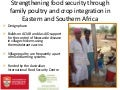 Robyn Alders (University of Sydney) - Strengthening food security through family poultry and crop integration in Eastern and Southern Africa