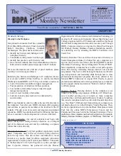 Newsletter: National BDPA (Jan 2003)