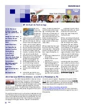 Newsletter: BDPA New York (Jun 2010)