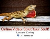 Online Video For Business: Strut Yo...
