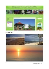 NaturNet Plus Book (part 2)