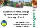 No till agriculture in parana state brazil-july 2011 by emater