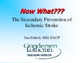 The Secondary Prevention Of Stroke ...