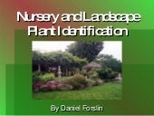 Nursury and plant identification
