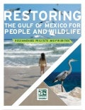 Restoring The Gulf of Mexico for People and Wildlife: Recommended Projects and Priorities
