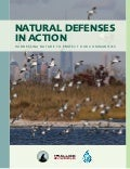 National Wildlife Federation's Natural Defenses in Action Report