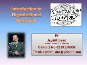 Introduction to Organisational Beha...