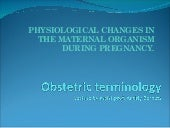 Obstetric terminology