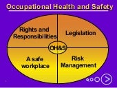 Occupational Health and Safety for ...