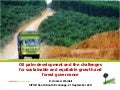 Oil palm development and the challenges for sustainable and equitable growth and forest governance