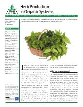 Herb Production in Organic Systems