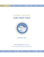 Cook County: Our First Year-rev