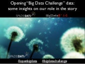 "Opening ""Big Data Challenge"" data: some insights on our role in the story"