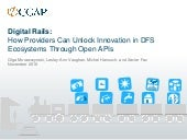 Digital Rails: How Providers Can Unlock Innovation in DFS Ecosystems Through Open APIs