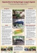 Opportunities for feeding forages to pigs in Uganda