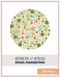 Optometry & Optician Email Marketing