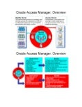 Oracle Access Manager Overview