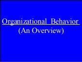 Organizational Behavior (An Overview)