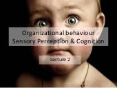 Organizational behaviour Perception...