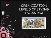 Organization levels of living organism