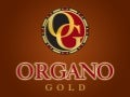 Organo gold-prezentace-marketing plán-cz