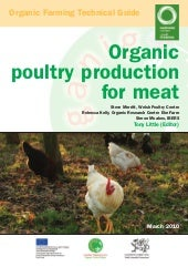 Organic Poultry Production