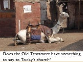 Does the Old Testament have somethi...