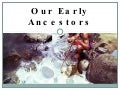 Our early ancestors