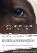 Animal Rights Advert