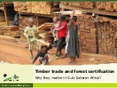 Timber trade and forest certification.Why do they matter in Sub-Saharan Africa?