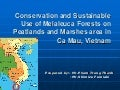 Conservation and sustainable use of Melaleuca forests on peatlands and marsh areas in Ca Mau, Viet Nam