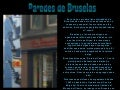 Paredes de bruselas