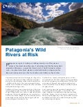 Fact Sheet - Patagonia's Wild  Rivers at Risk