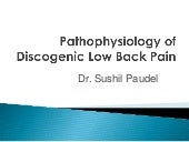Pathophysiology  of low back pain