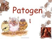 Patogenia ppt