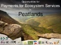 Payments for peatland ecosystem services