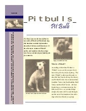 Pit Bulls - info, facts and education.