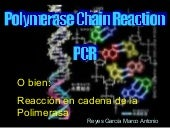 Pcr(Polimerase Chain Reaction)