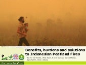 Benefits, burdens and solutions to Indonesian Peatland Fires