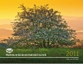 PEC Annual Report 2011